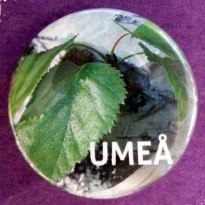 Umeåprodukter